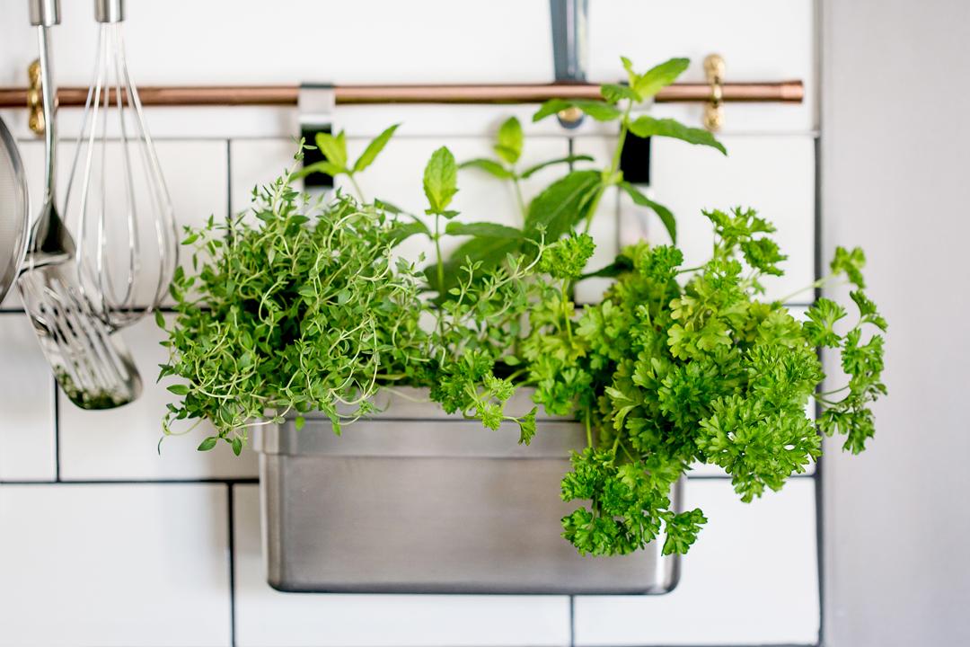 kitchen-tiles-cooper-herbs