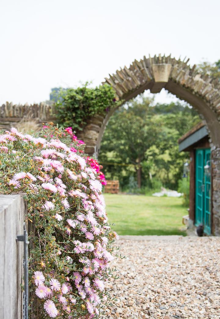 outdoors-garden-arch-flowers