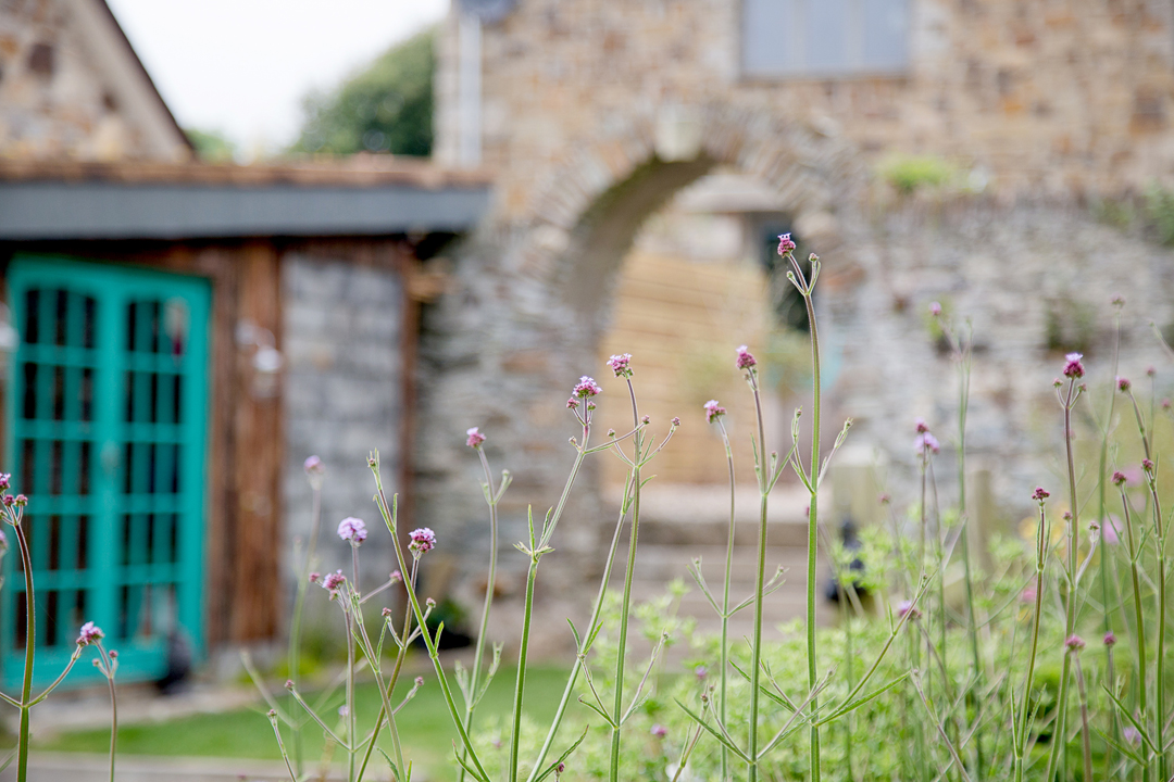 outdoors-garden-arch-shed-heather